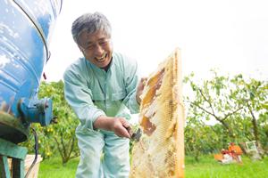 蜂蜜づくりに適した津山の地